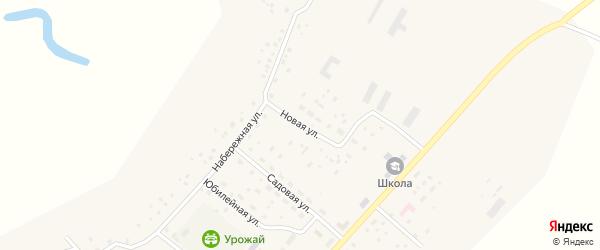 Новая улица на карте села Демского с номерами домов