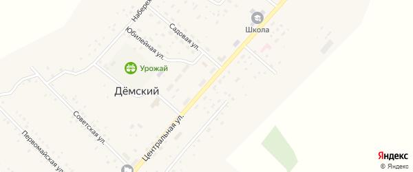 Центральная улица на карте села Демского с номерами домов