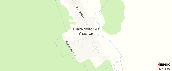Сосновая улица на карте деревни Шариповского Участка с номерами домов