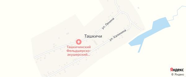 Улица Ленина на карте деревни Ташкичи с номерами домов