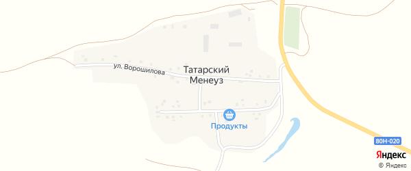 Молодежная улица на карте деревни Татарского Менеуза с номерами домов