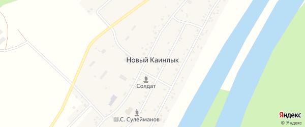 Центральная улица на карте села Нового Каинлыка с номерами домов