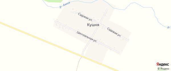 Центральная улица на карте деревни Кушни с номерами домов