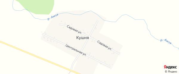Садовая улица на карте деревни Кушни с номерами домов