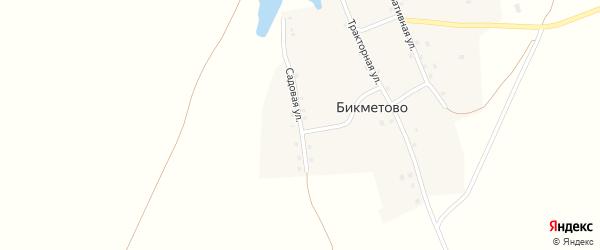 Садовая улица на карте села Бикметово с номерами домов