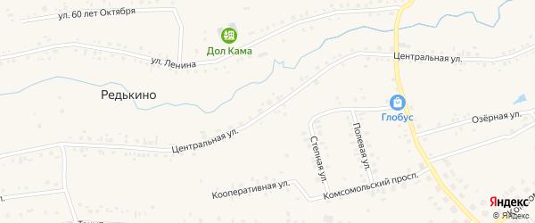 Центральная улица на карте деревни Редькино с номерами домов
