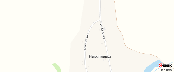 Заречная улица на карте деревни Николаевки с номерами домов