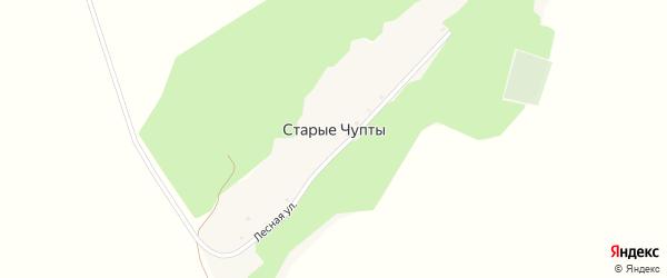 Лесная улица на карте деревни Старые Чупты с номерами домов