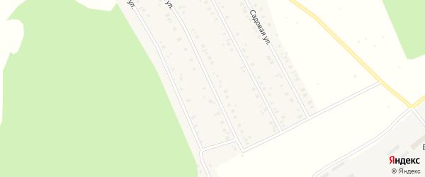 Новая улица на карте села Куяново с номерами домов