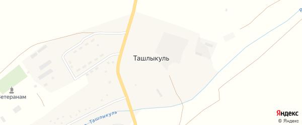 Молодежная улица на карте села Ташлыкуля с номерами домов