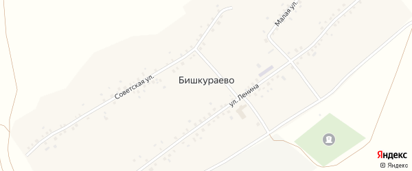 Советская улица на карте села Бишкураево с номерами домов