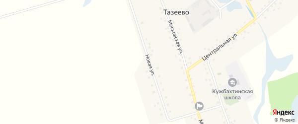 Новая улица на карте села Тазеево с номерами домов