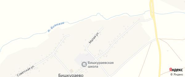 Малая улица на карте села Бишкураево с номерами домов