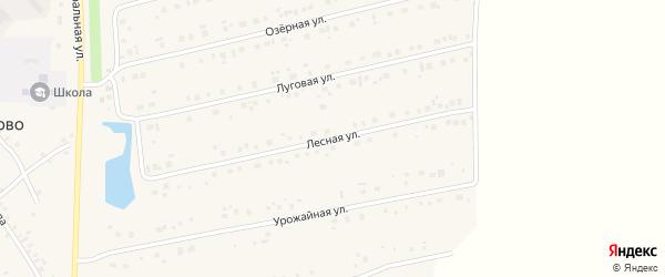 Лесная улица на карте села Карманово с номерами домов