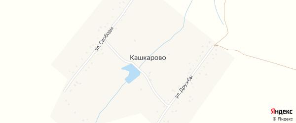 Улица Дружбы на карте села Кашкарово с номерами домов