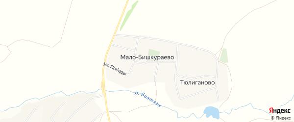 Карта деревни Мало-Бишкураево в Башкортостане с улицами и номерами домов
