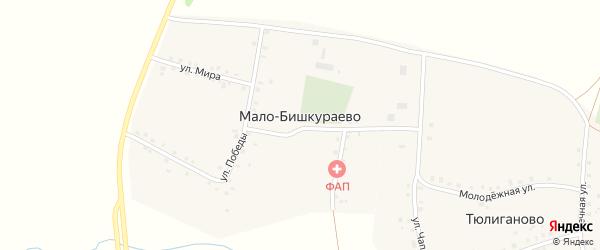 Улица Мира на карте деревни Мало-Бишкураево с номерами домов