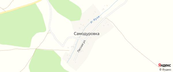 Лесная улица на карте деревни Самодуровки с номерами домов