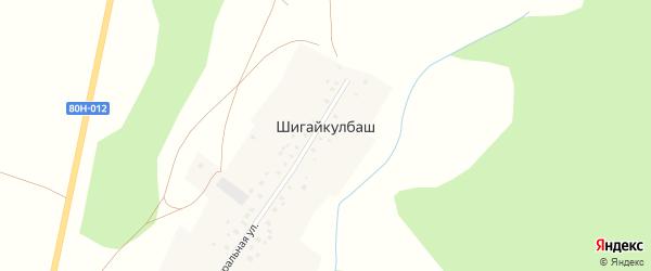 Центральная улица на карте деревни Шигайкулбаша с номерами домов