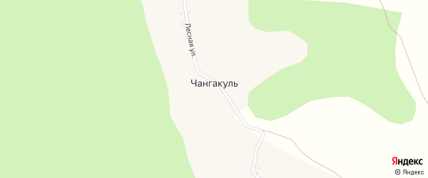 Лесная улица на карте деревни Чангакуля с номерами домов
