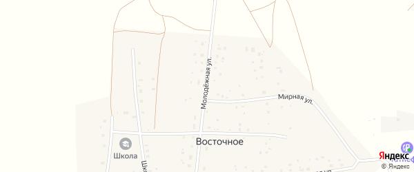 Молодежная улица на карте Восточного села с номерами домов