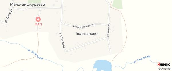 Молодежная улица на карте деревни Тюлиганово с номерами домов