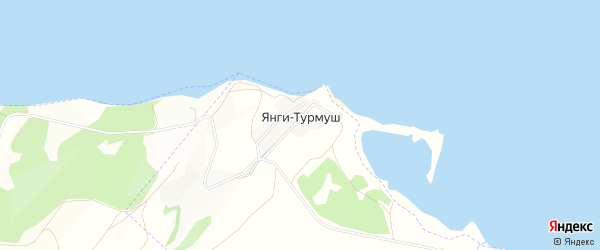 Карта деревни Янги-Турмуш в Башкортостане с улицами и номерами домов