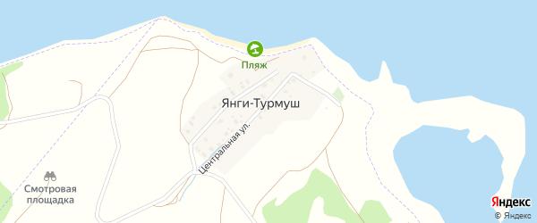 Центральная улица на карте деревни Янги-Турмуш с номерами домов