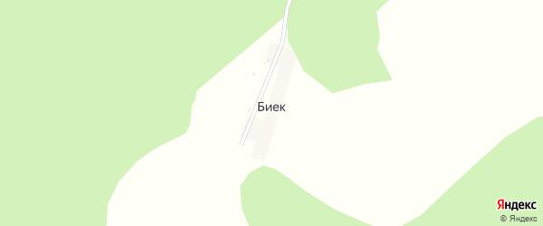 Центральная улица на карте деревни Бийка с номерами домов
