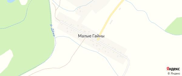 Улица 8 Марта на карте деревни Малые Гайны с номерами домов