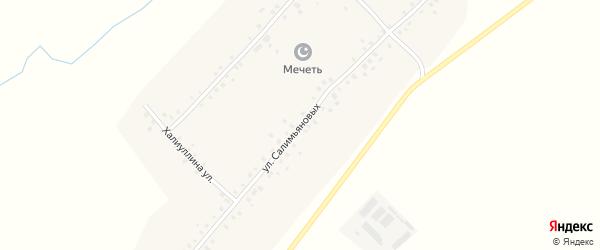 Улица Салимьяновых на карте села Нижнеманчарово с номерами домов