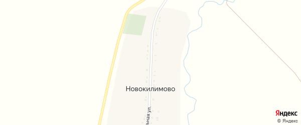 Центральная улица на карте деревни Новокилимово с номерами домов
