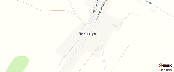 Дачная улица на карте деревни Бикчагула с номерами домов