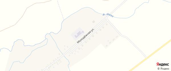 Молодежная улица на карте села Нижнеманчарово с номерами домов