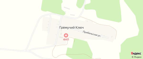 Улица Фрунзе на карте деревни Гремучего Ключа с номерами домов
