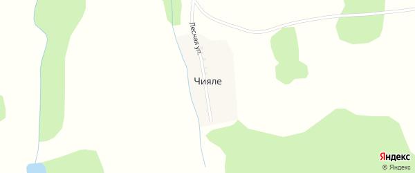 Лесная улица на карте деревни Чияле с номерами домов