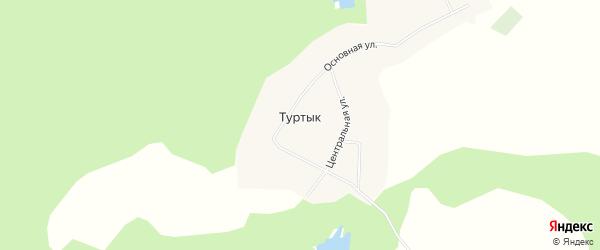 Карта села Туртыка в Башкортостане с улицами и номерами домов