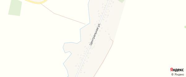 Центральная улица на карте деревни Тартара с номерами домов