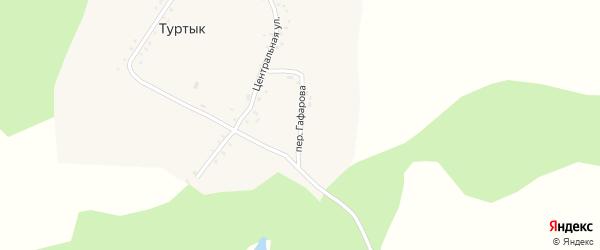 Переулок Гафарова на карте села Туртыка с номерами домов