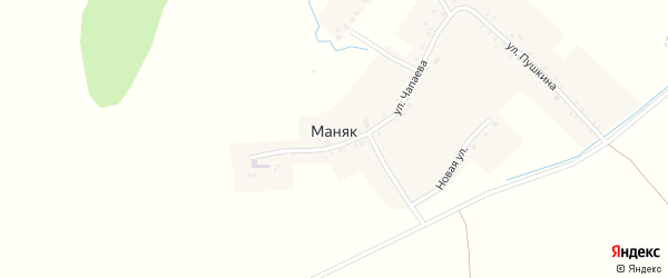 Новая улица на карте деревни Маняка с номерами домов