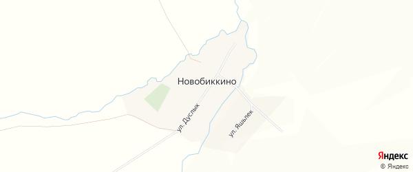 Карта села Новобиккино в Башкортостане с улицами и номерами домов