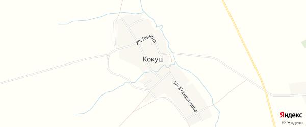 Карта деревни Кокуша в Башкортостане с улицами и номерами домов