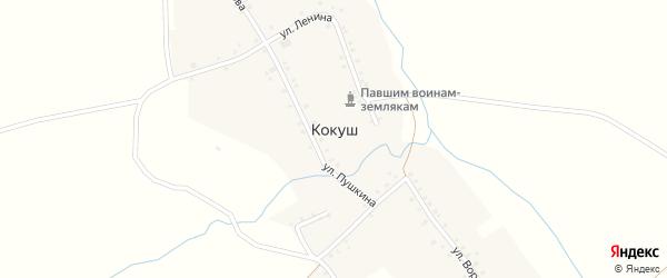 Улица Чкалова на карте деревни Кокуша с номерами домов