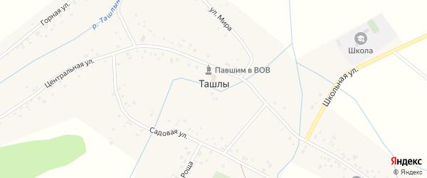 Центральная улица на карте села Ташлы с номерами домов