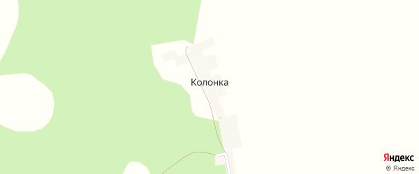 Лесная улица на карте деревни Колонки с номерами домов