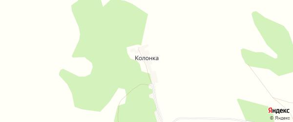Карта деревни Колонки в Башкортостане с улицами и номерами домов