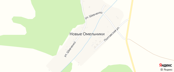 Полтавская улица на карте деревни Новые Омельники с номерами домов