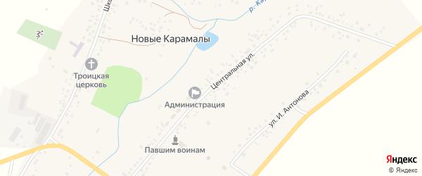 Центральная улица на карте села Новые Карамалы с номерами домов