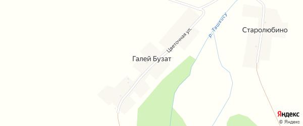 Цветочная улица на карте деревни Галея-Бузата с номерами домов