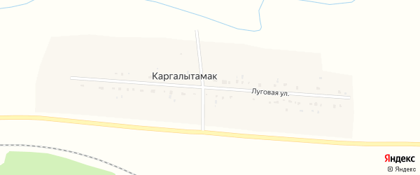 Луговая улица на карте деревни Каргалытамака с номерами домов